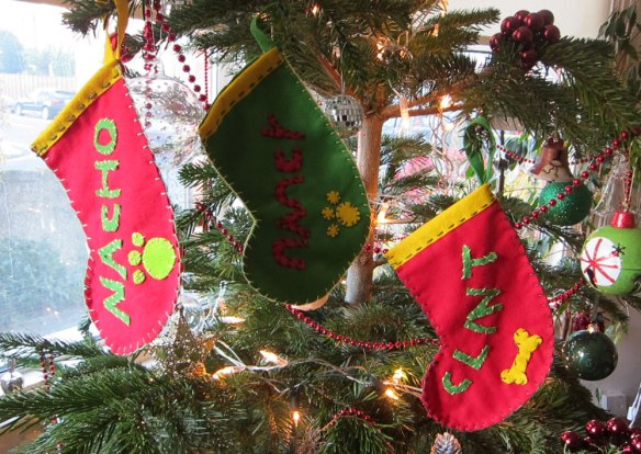 Doggy stockings