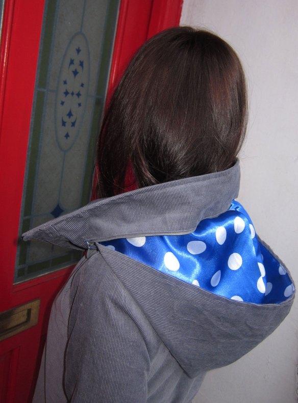 March Minoru hood